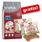 Briantos 14 kg + biscuiți DogBiski 2 x 90 g gratis!