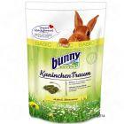 Bunny Basic - Marzenie królika