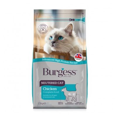 Burgess Neutered Cat