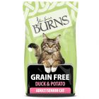 Burns Free From Adult Dry Cat Food – Duck & Potato
