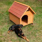 Casota de madeira Spike Classic para cães