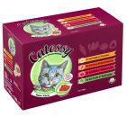 Смешанная упаковка Catessy кусочки в желе из разных овощей