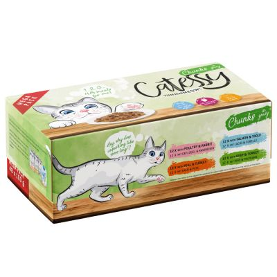 Catessy Chunks Pouches Saver Pack 48 x 100g