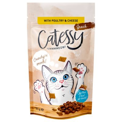 Catessy Crunchy Snacks with Poultry, Cheese & Taurine