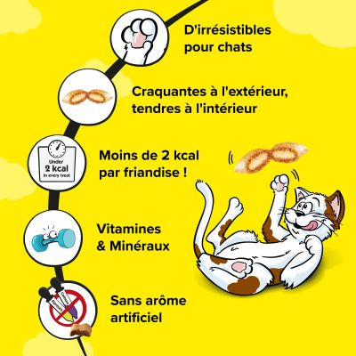 Catisfactions Selection Box 4 x 30 g pour chat