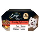 Cesar Country Kitchen Special Selection in Saus Mixverpakking Hondenvoer