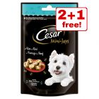 Cesar Mini Dog Snacks - 2 + 1 Free!*