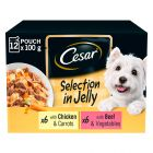 Cesar Pouches Deliciously Fresh Selection in Jelly Saver Packs
