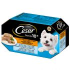 Cesar Senior 10+ - Pack misto