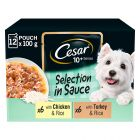 Cesar Senior 10+ Selection in Sauce