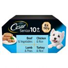 Cesar Senior 10+ Trays Mixed Pack