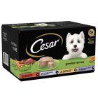 Cesar Classics Sélection en terrine pour chien