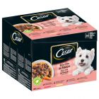 Cesar Deliciously Fresh Favorites in Sauce Pouch 24 x 100 g
