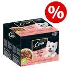 Cesar koiranruoka erikoishintaan -20 %