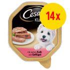 Cesar Multipack Hondenvoer 14 x 150 g