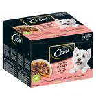 Cesar Pouches Deliciously Fresh Selection In Sauce