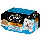 Cesar Senior 10+ Gemengd Pakket Hondenvoer
