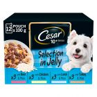 Cesar 10+ Senior Mix Selection in Jelly
