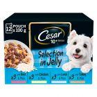 Cesar 10+ Senior Mix Selection in Jelly portionspåsar