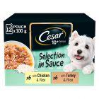 Cesar 10+ Senior Selection in Sauce portionspåsar