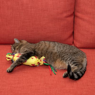 Chill-o-Pillow Cat Toy