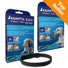 Collier apaisant pour chien ADAPTIL