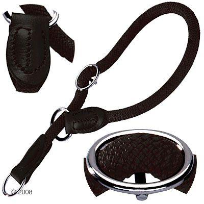 collier pour chien pour dressage