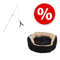 Combi Deal: Kattenmand Cozy Kingdom + Kattenhengel Bird