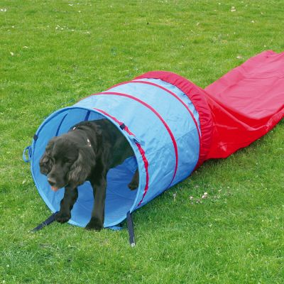 Complete Set - Outdoor Agility Fun & Sport