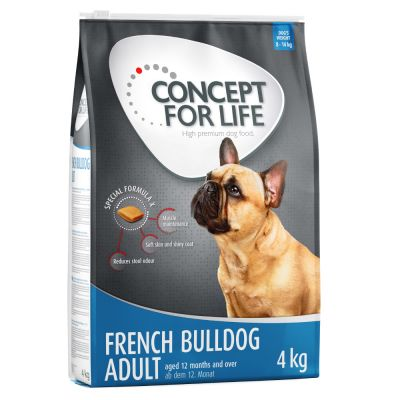 Concept for Life French bulldog Adult
