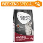 Concept for Life Maine Coon Adult