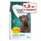 12 + 1,5 кг в подарок! 13,5 кг Concept for Life