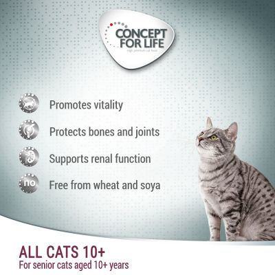 Concept for Life All Cats 10+