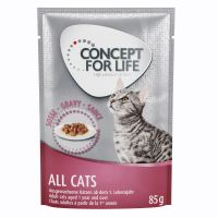 Concept for Life All Cats en salsa
