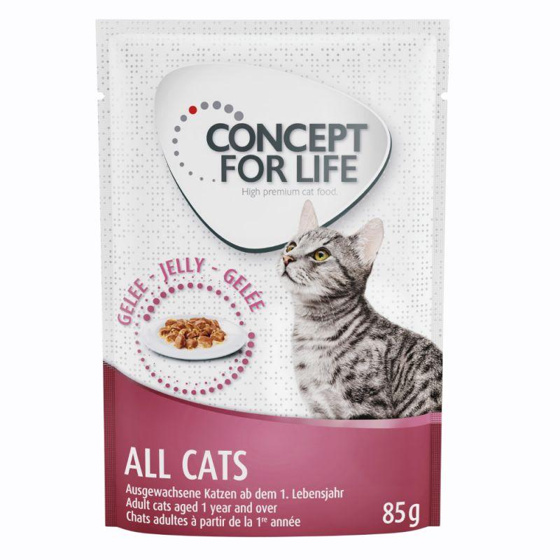 Concept for Life All Cats - i gelé
