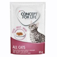 Concept for Life All Cats - in Gelei Kattenvoer