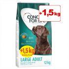 Concept for Life -bonuspakkaus 12 + 1,5 kg