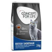 Concept for Life British Shorthair Adult Kattenvoer
