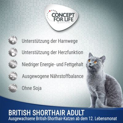 Concept for Life British Shorthair Adult Ragout