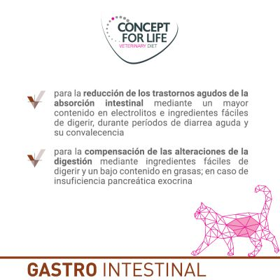 Concept for Life Gastro Intestinal Veterinary Diet pienso para gatos