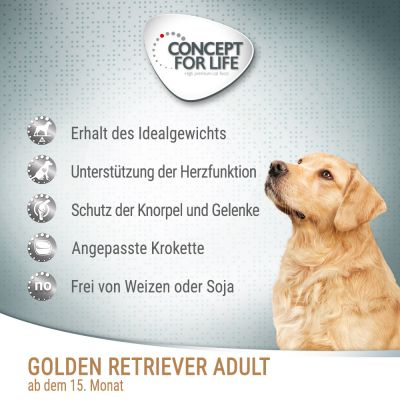 Concept for Life Golden Retriever Adult