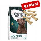Concept for Life granule + 6 ks à ca. 13cm Barkoo kosti zdarma!