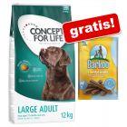 Concept for Life granuly + 7 Barkoo Dental snack zdarma!