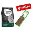 Concept for Life, karma sucha, 3 kg + Multi-Scratch mata do drapania gratis!