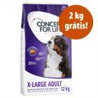 Concept for Life 12 kg em promoção: 10 kg + 2 kg grátis!