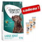 Concept for Life 12 kg + friandises Briantos Cream Team 3 x 75 g offertes !