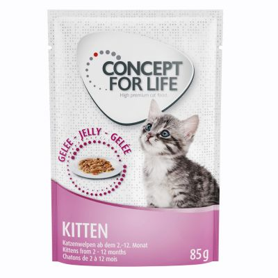 Concept for Life Kitten - aszpikban