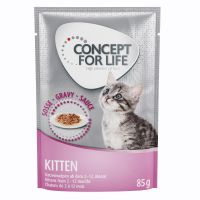 Concept for Life Kitten en sauce pour chaton