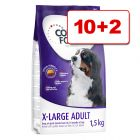 Concept for Life koiranruoka 12 kg: 10 + 2 kg kaupan päälle!