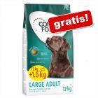Concept for Life krmivo pre psov v bonusovom balení